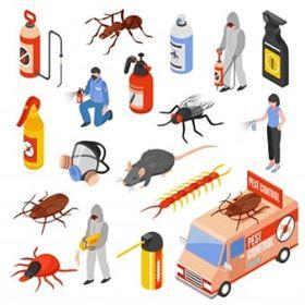 شركة مكافحة حشرات بالدمام 0534544488