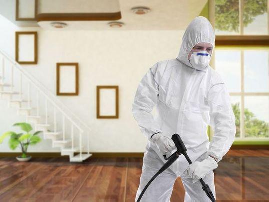 شركة مكافحة حشرات بالدمام,مكافحة حشرات بالدمام,رش حشرات بالدمام